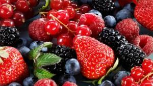 fructele de padure