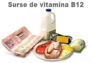 surse vitamina b12