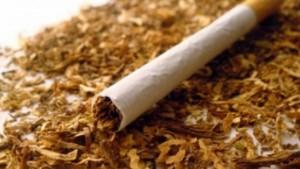 tutun tigari
