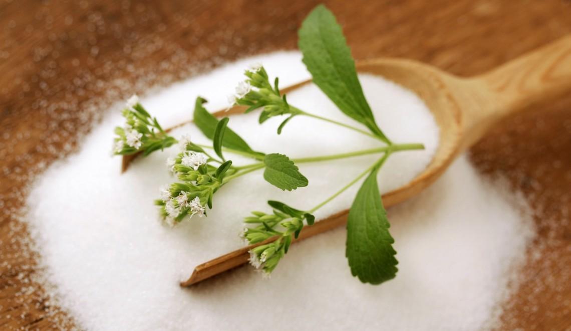 Stevia, dulcele pe care îl iubești